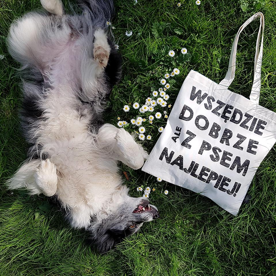 Sklep dla miłośników czworonogów. Znajdziesz tutaj gadżety dla właścicieli psów, kotów a nawet królików :)