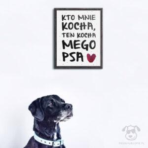 """Plakat """"Kto mnie kocha, ten kocha mego psa"""" idealny dla kochających właścicieli psów. Na prezent dla miłośnika zwierząt czy jako gadżet dla wielbiciela psów."""