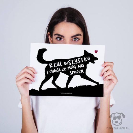 """Plakat """"Rzuć wszystko i chodź ze mną na spacer"""" idealny dla kochających właścicieli psów lubiących spacery z psem. Na prezent dla miłośnika zwierząt czy jako gadżet dla wielbiciela psów."""