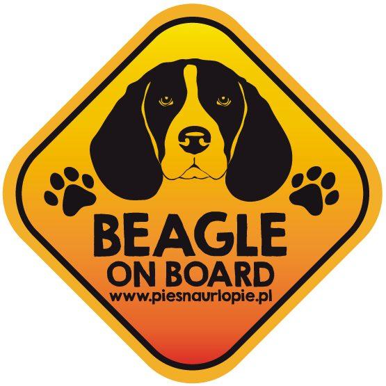 Naklejka na samochód z psem rasowym (beagle) idealna dla właściciela, który lubi podróżować z psem i dba o jego bezpieczeństwo. Na prezent dla miłośnika zwierząt czy jako gadżet dla wielbiciela psów.