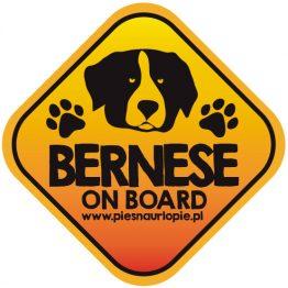 Naklejka na samochód z psem rasowym (berneński pies pasterski) idealna dla właściciela, który lubi podróżować z psem i dba o jego bezpieczeństwo. Na prezent dla miłośnika zwierząt czy jako gadżet dla wielbiciela psów.