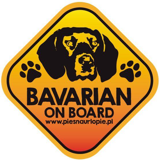 Naklejka na samochód z psem rasowym (posokowiec bawarski) idealna dla właściciela, który lubi podróżować z psem i dba o jego bezpieczeństwo. Na prezent dla miłośnika zwierząt czy jako gadżet dla wielbiciela psów.