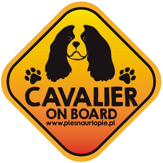 Naklejka na samochód z psem rasowym (cavalier king spaniel) idealna dla właściciela, który lubi podróżować z psem i dba o jego bezpieczeństwo. Na prezent dla miłośnika zwierząt czy jako gadżet dla wielbiciela psów.