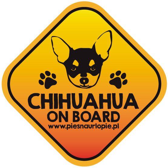 Naklejka na samochód z psem rasowym (chihuahua) idealna dla właściciela, który lubi podróżować z psem i dba o jego bezpieczeństwo. Na prezent dla miłośnika zwierząt czy jako gadżet dla wielbiciela psów.