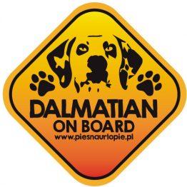 Naklejka na samochód z psem rasowym (dalmatyńczyk) idealna dla właściciela, który lubi podróżować z psem i dba o jego bezpieczeństwo. Na prezent dla miłośnika zwierząt czy jako gadżet dla wielbiciela psów.