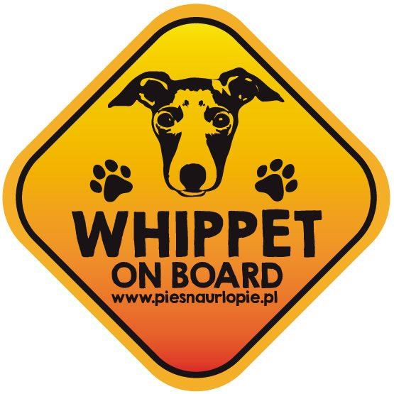 Naklejka na samochód z psem rasowym (whippet) idealna dla właściciela, który lubi podróżować z psem i dba o jego bezpieczeństwo. Na prezent dla miłośnika zwierząt czy jako gadżet dla wielbiciela psów.