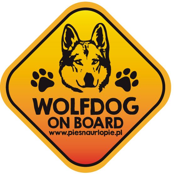 Naklejka na samochód z psem rasowym (wilczak czechosłowacki) idealna dla właściciela, który lubi podróżować z psem i dba o jego bezpieczeństwo. Na prezent dla miłośnika zwierząt czy jako gadżet dla wielbiciela psów.