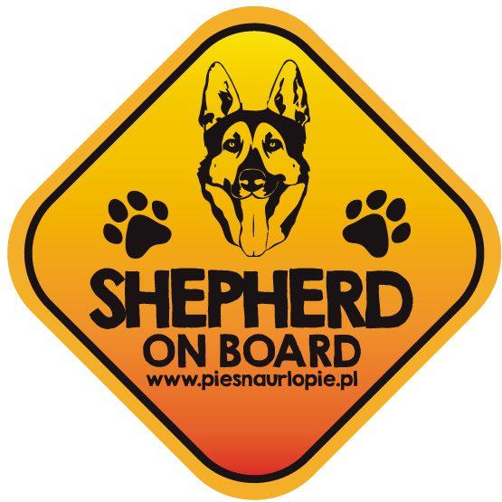 Naklejka na samochód z psem rasowym (owczarek niemiecki) idealna dla właściciela; który lubi podróżować z psem i dba o jego bezpieczeństwo. Na prezent dla miłośnika zwierząt czy jako gadżet dla wielbiciela psów.
