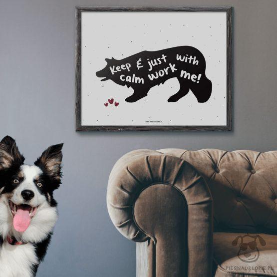 """Plakat """"Keep calm and just work with me"""" idealny dla właścicieli psów rasy border collie lub owczarek australijski. Na prezent dla miłośnika zwierząt czy jako gadżet dla wielbiciela psów."""