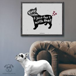 """Plakat """"Keep calm and just fart with me"""" idealny dla właścicieli psów rasy buldożek francuski. Na prezent dla miłośnika zwierząt czy jako gadżet dla wielbiciela psów."""