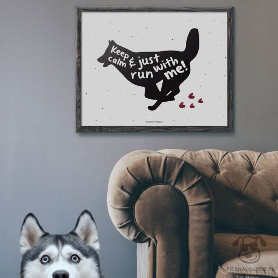 "Plakat ""Keep calm and just run with me"" idealny dla właścicieli psów rasy husky. Na prezent dla miłośnika zwierząt czy jako gadżet dla wielbiciela psów."