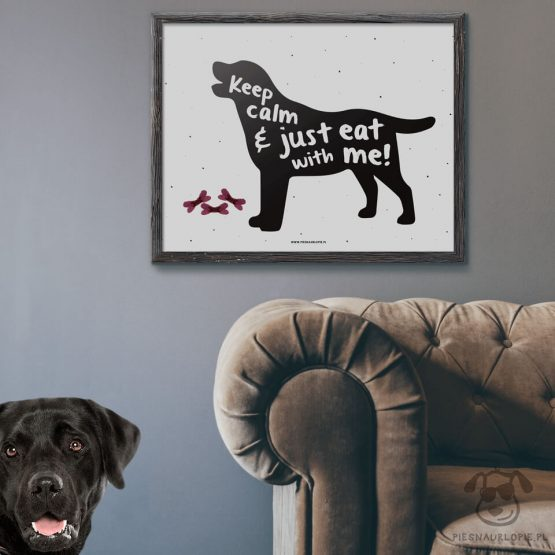 "Plakat ""Keep calm and just eat with me"" idealny dla właścicieli psów rasy labrador. Na prezent dla miłośnika zwierząt czy jako gadżet dla wielbiciela psów."