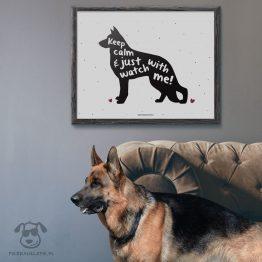 """Plakat """"Keep calm and just watch with me"""" idealny dla właścicieli psów rasy owczarek niemiecki. Na prezent dla miłośnika zwierząt czy jako gadżet dla wielbiciela psów."""