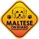 Naklejka na samochód z psem rasowym (maltańczyk) idealna dla właściciela, który lubi podróżować z psem i dba o jego bezpieczeństwo. Na prezent dla miłośnika zwierząt czy jako gadżet dla wielbiciela psów.