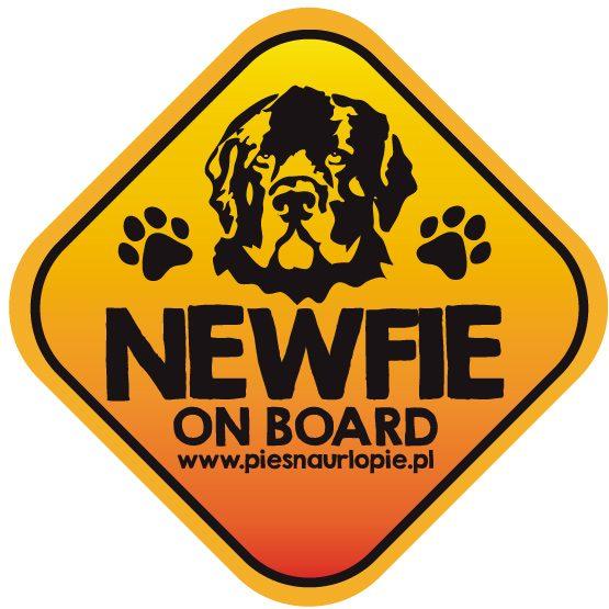 Naklejka na samochód z psem rasowym (nowofundland) idealna dla właściciela, który lubi podróżować z psem i dba o jego bezpieczeństwo. Na prezent dla miłośnika zwierząt czy jako gadżet dla wielbiciela psów.