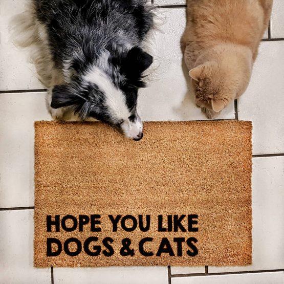 """Wycieraczka kokosowa """"Hope You like dogs & cats"""" idealna dla właściciela psa i kota. Na prezent dla miłośnika zwierząt czy jako gadżet dla wielbiciela psów i kotów."""