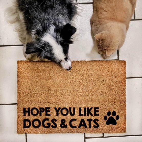 """Wycieraczka kokosowa """"Hope You like dogsA & cats"""" idealna dla właściciela psa i kota. Na prezent dla miłośnika zwierząt czy jako gadżet dla wielbiciela psów i kotów."""