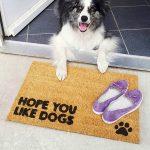 """Wycieraczka kokosowa """"Hope You like dogs"""" idealna dla właściciela psa. Na prezent dla miłośnika zwierząt czy jako gadżet dla wielbiciela psów."""