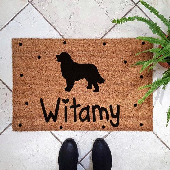 Wycieraczka kokosowa z psem rasowym berneński pies pasterski. Prezent dla właściciela psa. Sklep z wyjątkowymi gadżetami dla miłośników zwierząt.