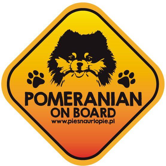 Naklejka na samochód z psem rasowym (pomeranian) idealna dla właściciela; który lubi podróżować z psem i dba o jego bezpieczeństwo. Na prezent dla miłośnika zwierząt czy jako gadżet dla wielbiciela psów.