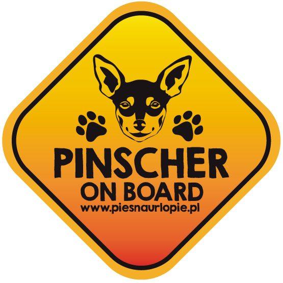 Naklejka na samochód z psem rasowym (pinczer / ratlerek) idealna dla właściciela, który lubi podróżować z psem i dba o jego bezpieczeństwo. Na prezent dla miłośnika zwierząt czy jako gadżet dla wielbiciela psów.