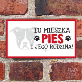 Tabliczka ostrzegawcza z psem rasowym american staffordshire terrier. Prezent dla właściciela psa. Sklep z wyjątkowymi gadżetami dla miłośników zwierząt.