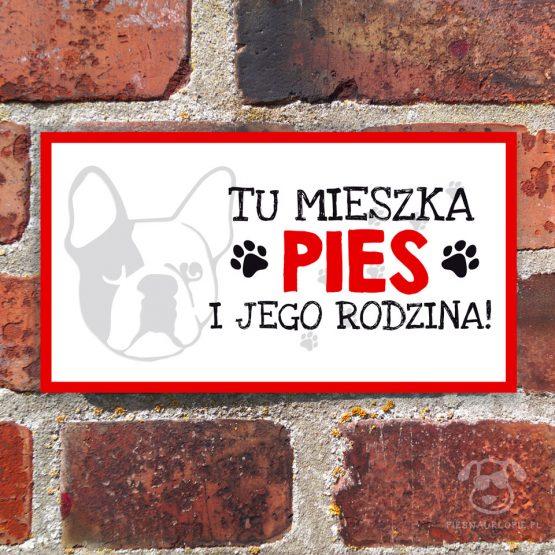 Tabliczka ostrzegawcza z psem rasowym buldog francuski (buldożek). Prezent dla właściciela psa. Sklep z wyjątkowymi gadżetami dla miłośników zwierząt.
