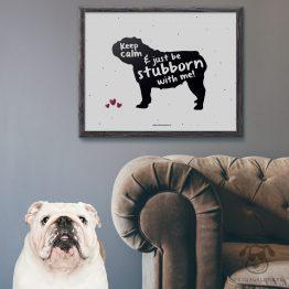 """Plakat """"Keep calm and just be stubborn with me"""" idealny dla właścicieli psów rasy buldog angielski. Na prezent dla miłośnika zwierząt czy jako gadżet dla wielbiciela psów."""